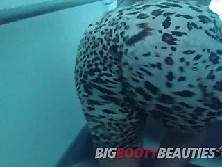 BigBootyBeauties DreamDoll Teaser